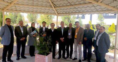 کمیته روابط بین الملل و صلح
